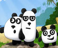 3 Panda